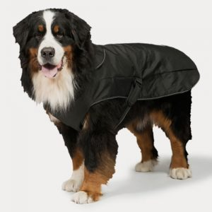 Harness Dog Coats